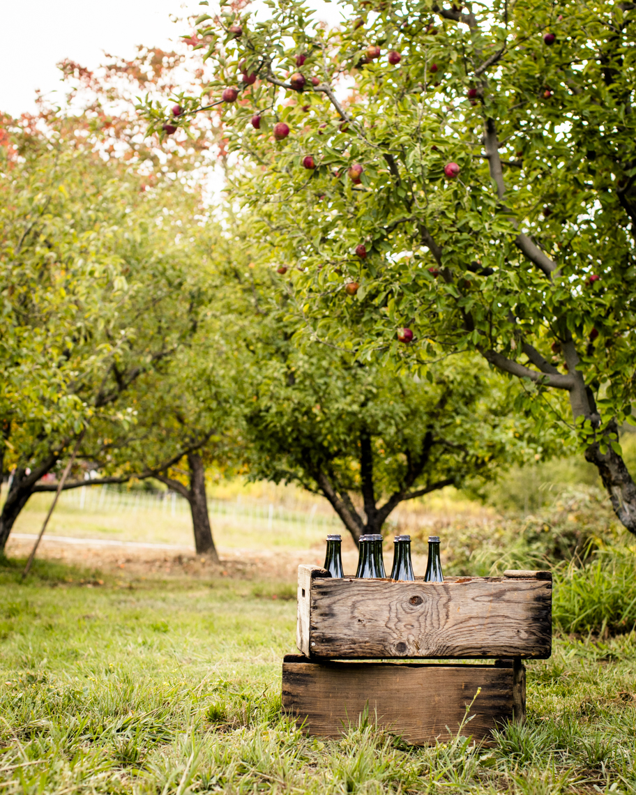 cider_location_2592